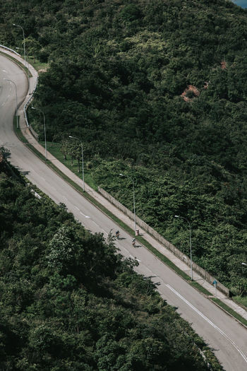 High angle view of highway by trees