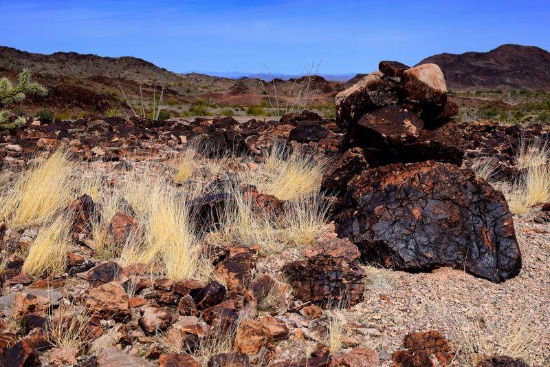 Arizona Desert Desert Landscape Rocks Desert Colors Desert Beauty Landscape Desert Plants