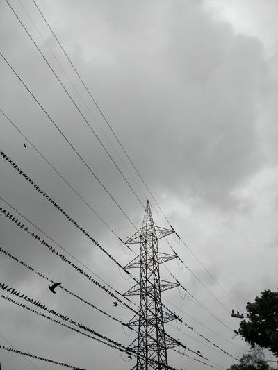 Architecture Cable Cloud - Sky Complexity Connection Day Electrical Component Electrical Equipment Electricity  Electricity Pylon Flock Of Birds Fuel And Power Generation Low Angle View Nature No People Outdoors Overcast Power Line  Power Supply Sky Tall - High Technology Telephone Line