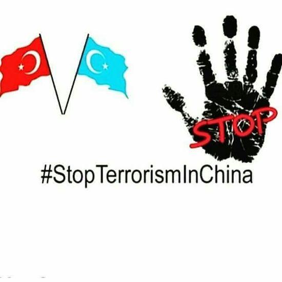 No Terror China Turkey Free Turkistan Stop Dur Free DoğuTürkistan Ozgur