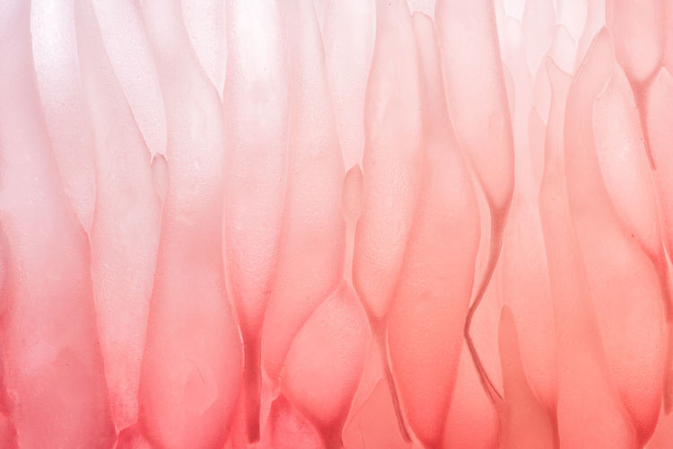 Background color of flesh grapefruit. Background Photography Backgrounds Close-up Color Palette Colorful Colors Crumpled Day Flamingo Full Frame Material Nature No People Pale Pink Pastel Colored Pink Color Textile