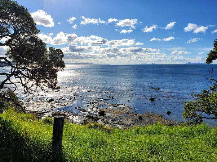 Goat Island, New Zealand 🇳🇿 Scenary Grass Green Clouds And Sky Relaxing View Island Ocean Sea Goat Island Marine Reserve Goat Island Water Sky Beauty In Nature Tranquility Plant Tranquil Scene Tree Nature Scenics - Nature Cloud - Sky Sea Land Day No People Sunlight Growth Beach Outdoors Idyllic My Best Photo