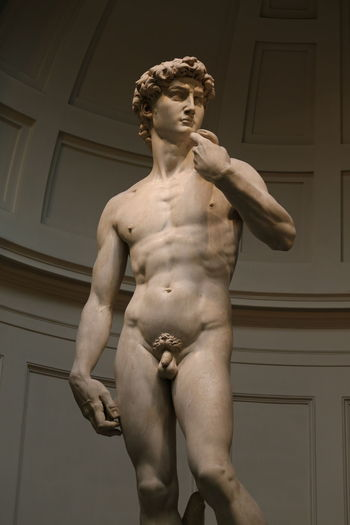 David Florence Italy Accademia Michelangelo's David