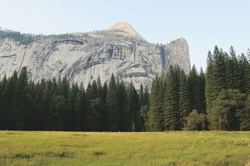 """Cliff of life"" Yosemite park, California, USA. Edge Of The World Landscape Nature EyeEm Nature Lover Enjoying Nature Beautiful USA Eye4photography  EyeEm Best Shots Naturelovers Fine Art Photography"