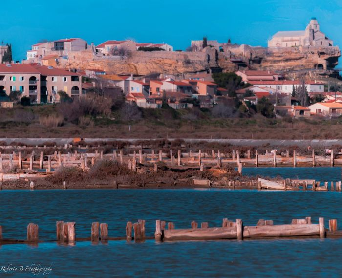 Roberto.BPhotography EyeEm Best Shots Nature Vegetables Couleurs Color Fos Sur Mer Méditerranée