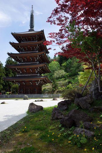 青森県青森市にある青龍寺です。敷地内はとても神聖な雰囲気につつまれていました。 Japan Buddha Statue Mornig Halidom