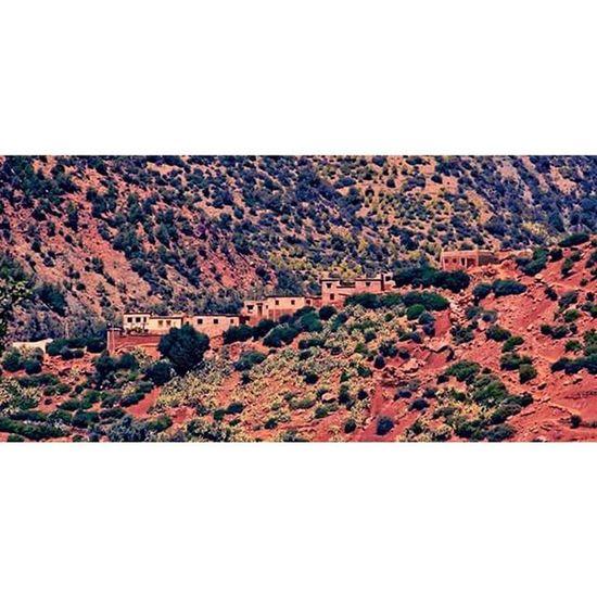Ourika Ourikavalley Vallée  Valleeourika Rouge Redlands Mars Ilyadelavie Theyarealive Moutain Hills Montagne Colline House Maisonette Noconection Pasdereseau Wild Wildlife Sauvage Viesauvage