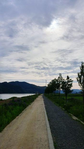 공원 산책 동네 강 Korea Korea Photos