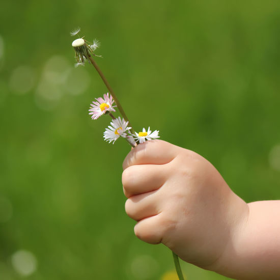 Nature Flower Outside Spring Child Holding Hands Hand Children Outdoors Close Up Springtime Spring Flowers Detail Nature Photography Freshness Nature_collection Close-up Holding Springtime Blossoms One Person Springtime Flowers Human Hand Human Body Part Child In Nature Spring Is Coming  Petal Fragility Flower Head Lifestyles Day Real People People