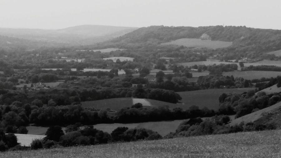 EyeEm Selects Rural Scene Field Landscape Tranquil Scene Tree Outdoors