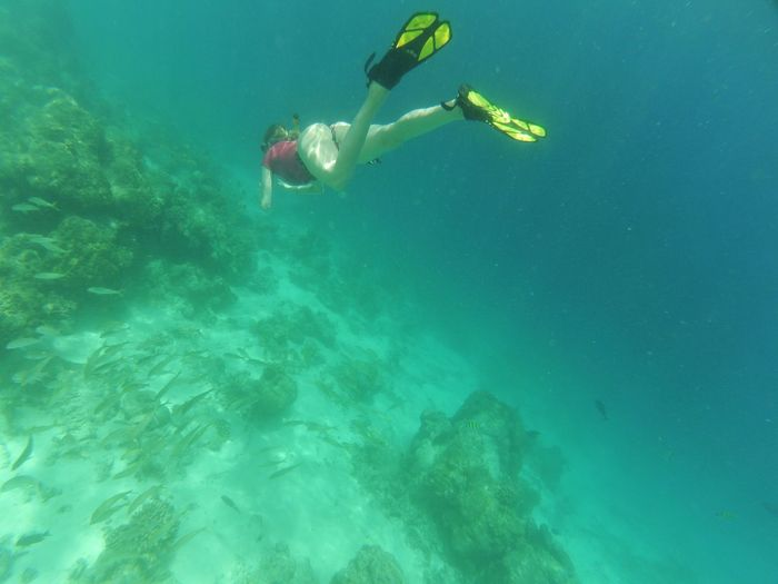 High angle view of woman scuba diving in sea
