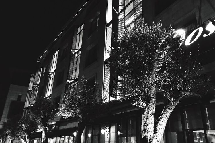 Architecture Building Exterior Built Structure Low Angle View Tree Illuminated No People Outdoors Day City Nightphotography Night Lights Night Nightlife HotelTurkeyadows] turkeIPhonenIPhone7PlusuMeselaxax