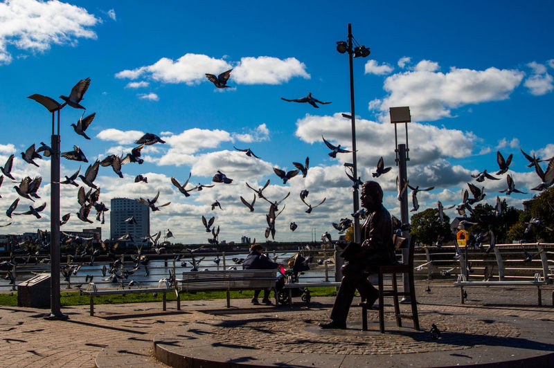 Terry Wogan and Pigeons Ireland Terry Wogan Animal Wildlife Architecture Bird Built Structure Cloud - Sky Day Flock Of Birds Flying Full Length Group Of Animals Group Of People Incidental People Large Group Of Animals Limerick Men Nature Outdoors Real People Sky Sunlight Terry Vertebrate First Eyeem Photo EyeEmNewHere
