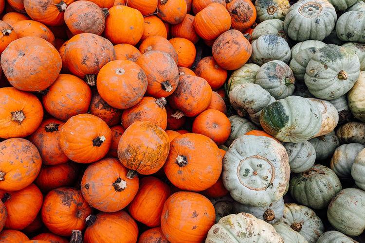 Full frame shot of pumpkins for sale at market stall