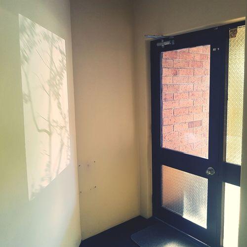 Shadow Window