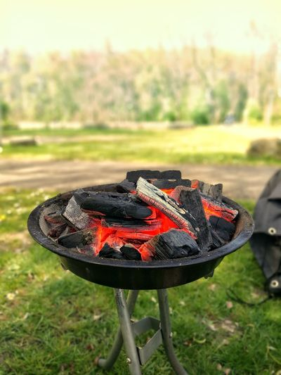 No People Day Outdoors Grass Nature Close-up Beauty In Nature Barbecue Grill Barbecue Park