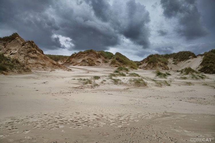 Cloudporn Denmark Denmark 🇩🇰 Landscape Landscape_Collection EyeEm Nature Lover EyeEm Masterclass Sand Dune Northsea Dunescape Beach Sand Dramatic Sky