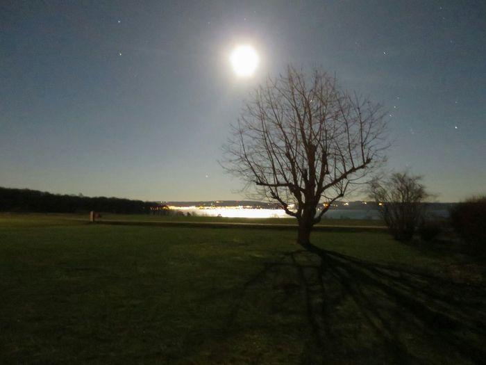 Moon over Stigby Persgård , My Garden Landscape ??