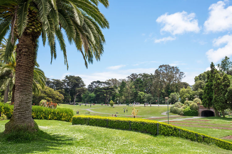 Scenic view of park during sunny day