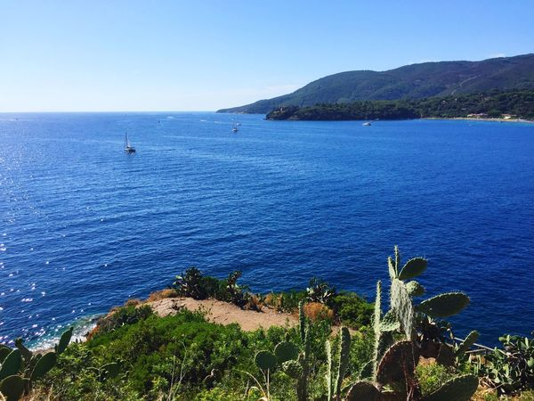 Sea Nature Beauty In Nature Blue Water Mountain Outdoors Day Tranquility Scenics High Angle View Tranquil Scene Clear Sky No People Horizon Over Water Beach Sky Architecture Tree Barbarossa Isola D'Elba  Porto Azzurro Italy Travel Destinations