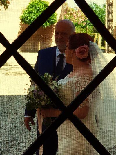 io e mia figlia Wedding Ceremony Tree Golf Club Shadow Sunlight Silhouette