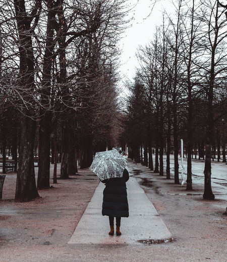 Rear view of woman standing on footpath amidst bare trees