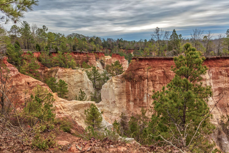 Providence Canyon from the Top Blue Canyon Clouds Georgia Green Orange Red Sky Trees White