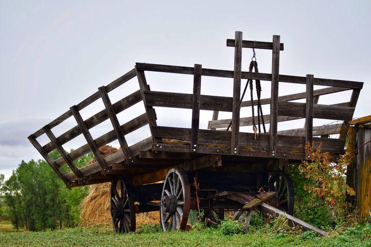 Horse cart on field against clear sky