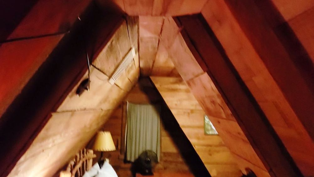 A-frame Cabin A-frame Triangle Shape Cedar Loft Log Cabin Interior EyeEm Selects Architecture Built Structure Historic Architectural Design Architecture And Art Architectural Feature Ceiling Building Architectural Detail