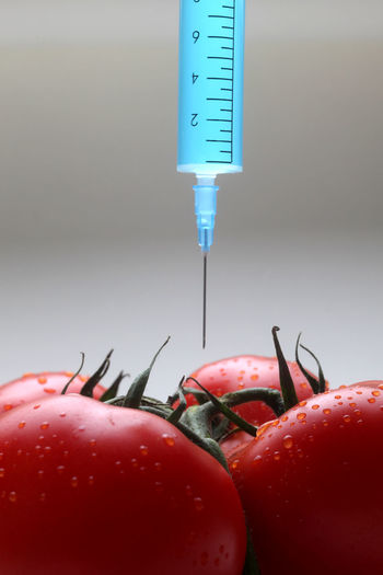 Close-up of fresh tomatoes with syringe on gray background