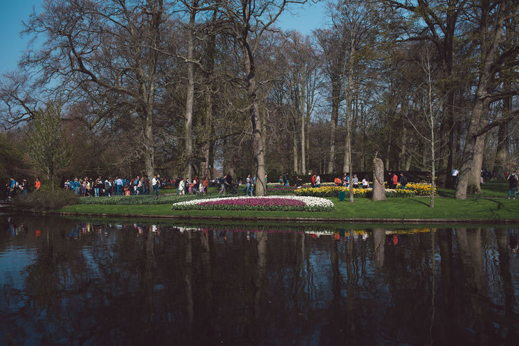 Tree Water Plant Reflection Group Of People Nature Large Group Of People Lake Day Park Crowd Grass Park - Man Made Space Outdoors Bare Tree Real People Sky Beauty In Nature