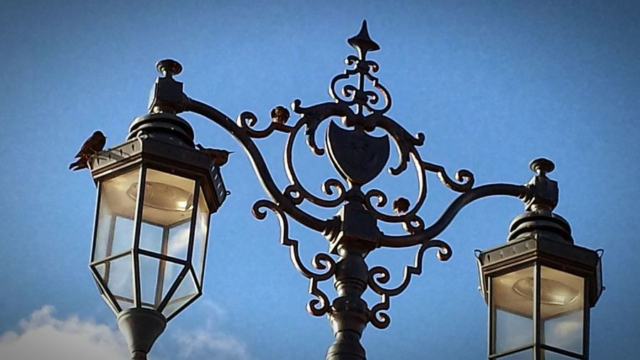 🐦🌅 Crow Street Light Old-fashioned Sky No People Outdoors Day Close-up Wintertime Sky Collection Blue Tranquility Cold Days Beauty In Nature Portsmouthphotographer Southsea