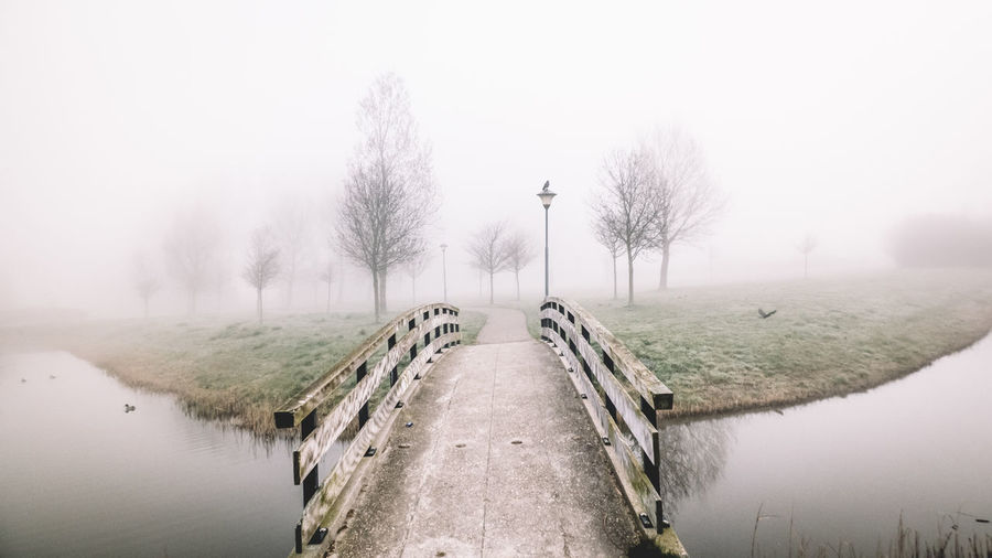 This was one of the first photos i have ever taken and i'm still in love with it! Into the unknown 🔥 | The Way Forward Outdoors Tree No People Day Fog Winter EyeEmNewHere Foggy Morning Wandering Landscape The Great Outdoors - 2017 EyeEm Awards Traveling EyeEm Nature Lover Dawn Of A New Day Heemskerk If Trees Could Speak Gloomy Jungle Bridge Bridge Over Water Bridge Photography Misty Morning Live For The Story Canon The Great Outdoors - 2018 EyeEm Awards