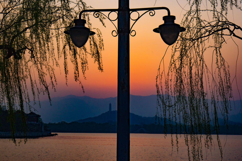 Close-up Lake Lampshade Nature No People Outdoors Sky Spring Time 🌻 Summer Palace Beijing Sunset Tree Water The Great Outdoors - 2017 EyeEm Awards Sommergefühle