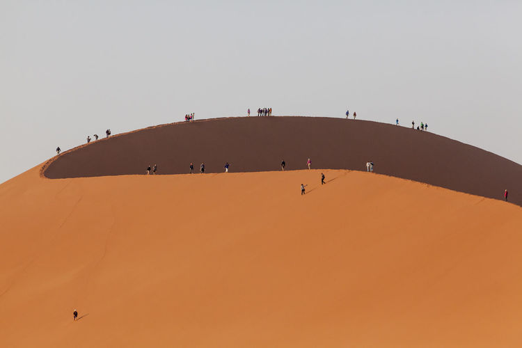 People walking up huge Big Daddy sand dune, Sossusvlei, Namibia, Africa Adventure Africa Clear Sky Day Desert Low Angle View Namib-Naukluft National Park Namibia Nature Outdoors People Sand Dune Sky Sossusvlei Travel Unrecognizable People