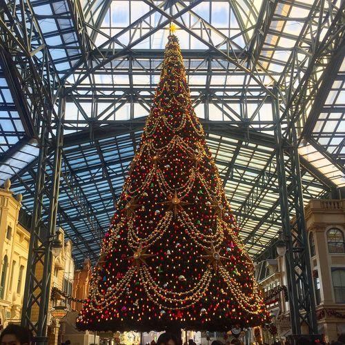 ディズニー ディズニーランド クリスマスツリー Disney Disneyland Christmas Christmas Tree Japan Enjoying Life