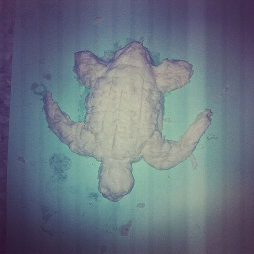 Tambien hize una tortuga :) Tortuga Artandcrafts Dough Animal turtle handmade project