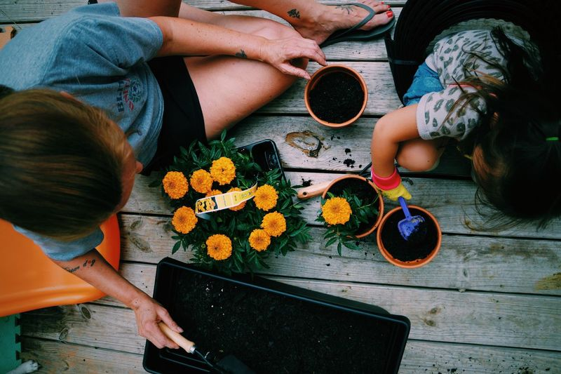 Garden Flowers Plants Flowers,Plants & Garden People Gardening My Hobby Fun Family Enjoying Life Fresh On Market 2018