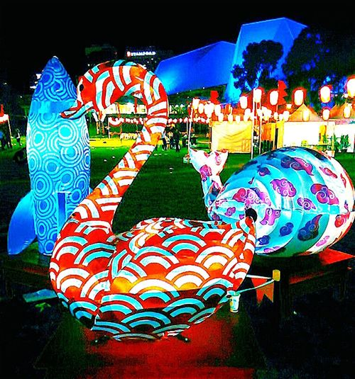 Taking Photos Lanternfestival OzAsia Festival Swan Festival Adelaide, South Australia Check This Out Swans Night Photography Nightphotography Inflatable  Moon Lantern Festival Elder Park Inflatables Festivals City Of Adelaide Festivalphotography CityOfAdelaide Color Colors Colour Colours Inflatable Swan