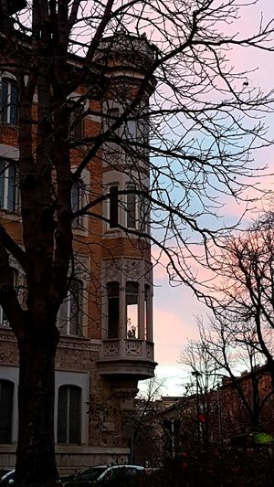 Bow Window Building Exterior Palace Architecture Sunset Tree Trunk Pink Sky My City Point Of View Walking Around Clouds And Sky Liberty Style Turin Italy Architecture_collection City City Life Tranquil Scene Tree City Shadow Sky Architecture Building Exterior Built Structure Calm Scenics Silhouette