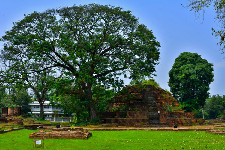 EyeEmNewHere EyeEm Best Shots Ruined Archaeology Travel Ancient Civilization Belief Place Of Worship Building Exterior No People Grass Old Ruin Day Ancient Religion Travel Destinations Nature Built Structure History The Past Architecture Plant Tree Thaland Phitsanulok