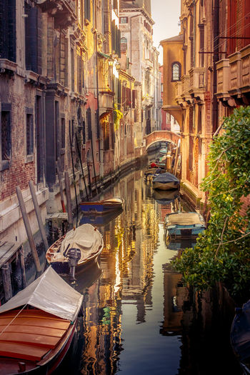 Architecture Boat Building Exterior Canal City Colorful Cultures Gondola - Traditional Boat Gondolier Gorge Italy Italy❤️ Outdoors Reflection Streaming Light Sunlit Time For Wine Travel Travel Destinations Traveling Vacation Venice Venice, Italy Water Reflection Water Reflections The City Light