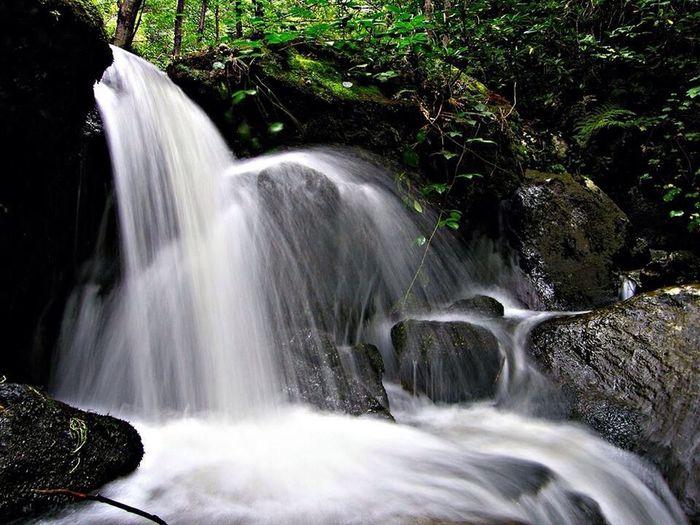 Beautiful life, relaxing time Relaxing Akçaabat Trabzon Canonphotography Objektifimden Nature Türkiye Turkey Highland Paradise