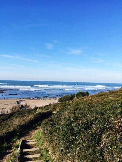 Sea Nature Horizon Over Water Scenics Water Tranquil Scene Beach