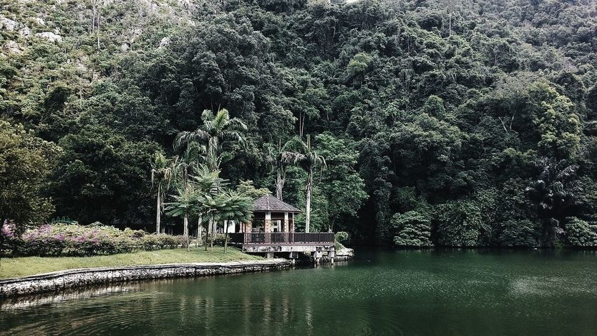 EyeEm Best Shots - Landscape Forest Mountain View EyeEm Nature Lover EyeEm Best Shots - Nature