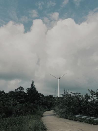 Cloud - Sky Sky Environment Tree Fuel And Power Generation Nature Environmental Conservation Plant Wind Power Technology No People Turbine Wind Turbine Social Issues Fog Outdoors