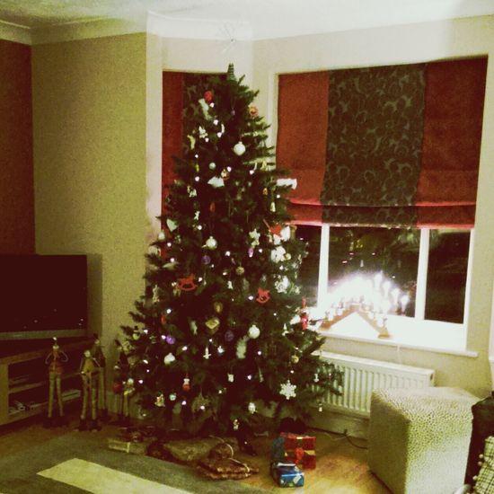 Christmas tree Christmastime CountdownToChristmas