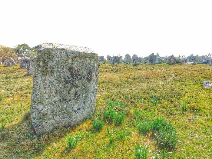Carnac stones