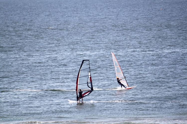 ⭐︎ウインドサーフィン ⭐︎Windsurfing Windsurfing Tokyo Bay Wind Japan