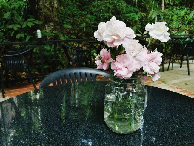 Flower Water Flower Head Vase Table Plant Bunch Of Flowers Flower Arrangement Blossom